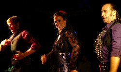 Flamenco dansers madrid