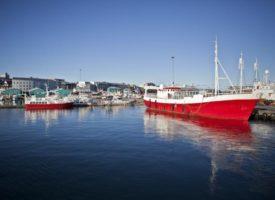 stedentrip Scandinavië - Oude haven reykjavik ijsland